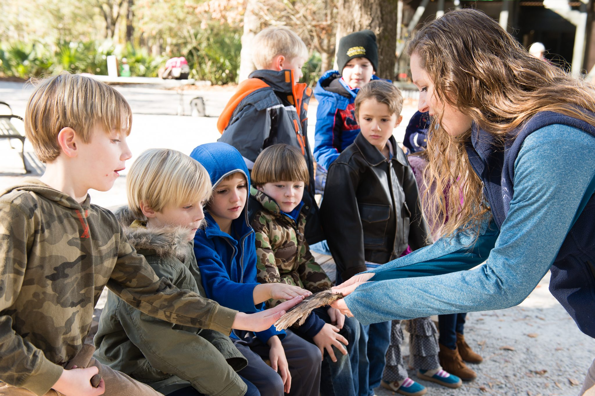 Private Group Education Programs The Center For Birds Of Prey